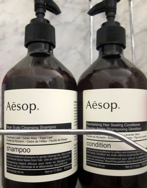 my beautybagg: Aesop shampoo + conditioner